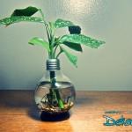 Ampülden Vazo Yapımı - 3