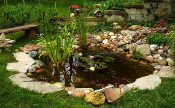 Bahçede Süs Havuzu